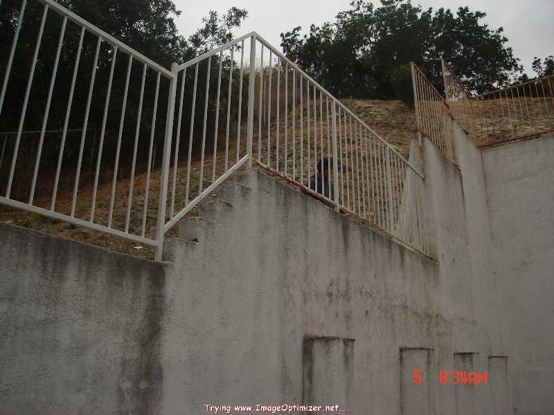 http://eww.trustlink.org/Image.aspx?ImageID=887c